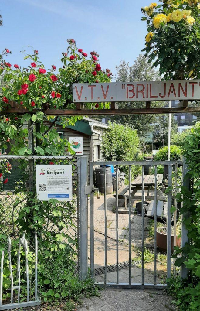 Het entree van VTV Briljant